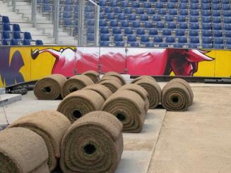 Red Bull-Arena gyepszőnyege, Salzburg