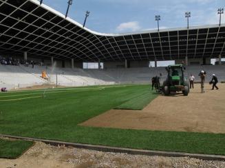 Stozice Stadion gyepszőnyege, Ljubljana